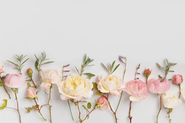 흰색 바탕에 축제 꽃 영어 장미 구성입니다. 오버 헤드 평면도, 평면 누워. 공간을 복사합니다. 생일, 어머니, 발렌타인, 여성, 결혼식 날 컨셉입니다.