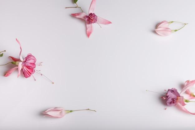 파스텔 색상의 흰색 배경에 축제 꽃 자홍색 구성. 오버 헤드 뷰, 플랫 레이. 공간을 복사합니다. 생일, 어머니, 발렌타인, 여성, 결혼식 날 컨셉입니다.