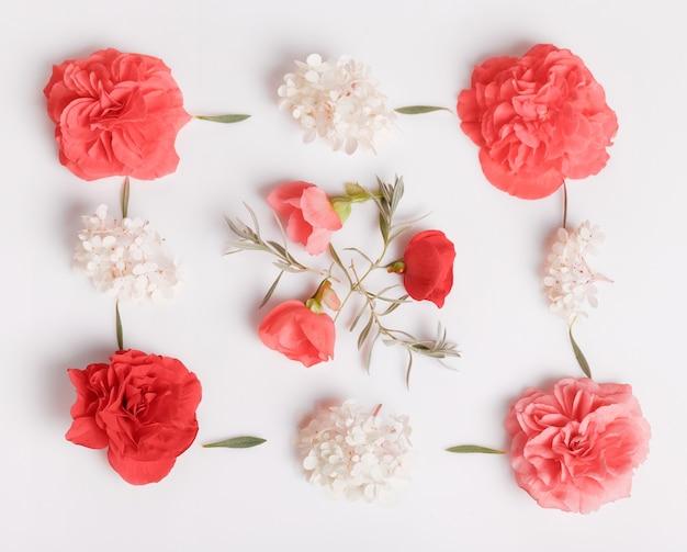 축제 꽃 붉은 베고니아, 흰색 배경에 흰색 수국 구성. 오버 헤드 평면도, 평면 누워. 공간을 복사합니다. 생일, 어머니, 발렌타인, 여성, 결혼식 날 개념