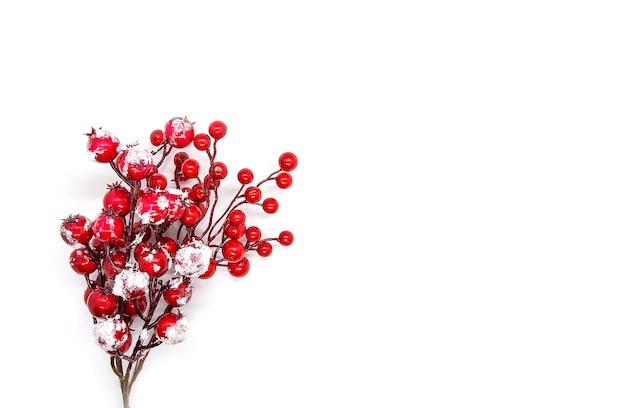 赤いヒイラギの植物の果実とお祝いの新年やクリスマスの背景。