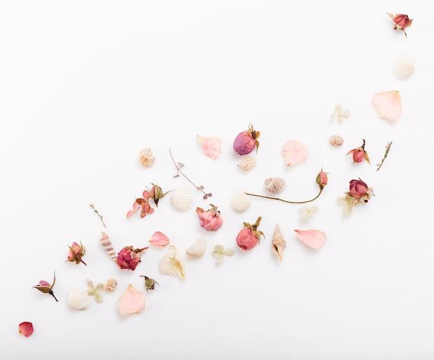 축제 분홍색 말린 꽃 로즈버드, 조개, 리본, 흰색 배경에 녹색 나뭇가지 구성. 오버 헤드 평면도, 평면 누워. 공간을 복사합니다. 생일, 어머니, 발렌타인, 여성, 결혼식 날 컨셉입니다.