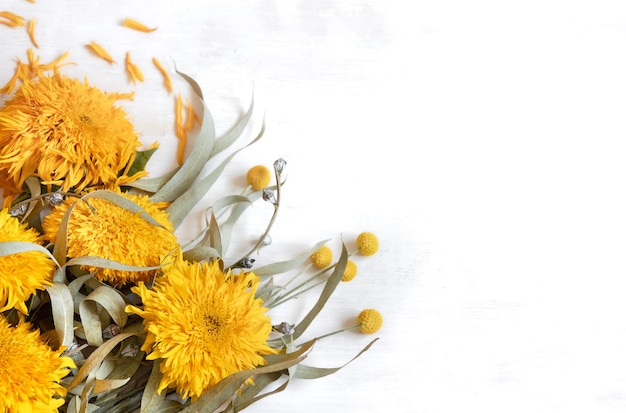 Festive white background with sunflowers and craspedia flowers, copy space.