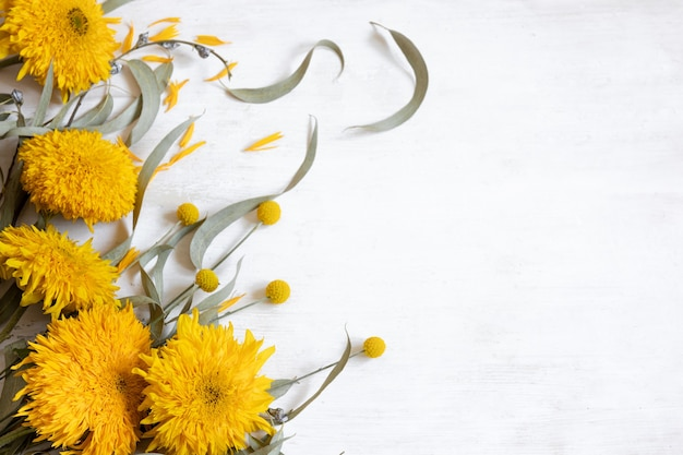 Festive white flat lay background with sunflowers and craspedia flowers, copy space.