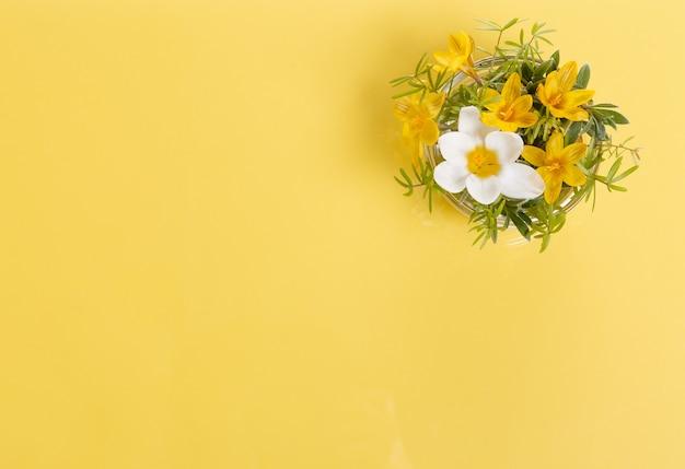 노란색 배경에 축제 야생 봄 노란색 꽃과 나뭇가지 구성. 오버 헤드 평면도, 평면 누워. 공간을 복사합니다. 생일, 어머니, 발렌타인, 여성, 결혼식 날 컨셉입니다.