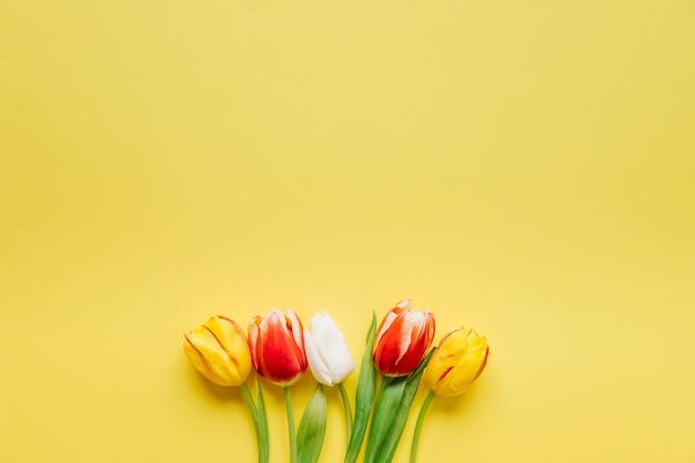 Несколько свежих тюльпанов на желтом