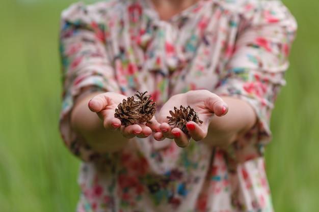 Несколько сосновых шишек в руках женщины, крупным планом