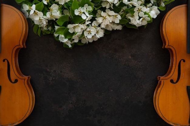 Две старые скрипки с fiddlestick и цветущих ветвей яблони.
