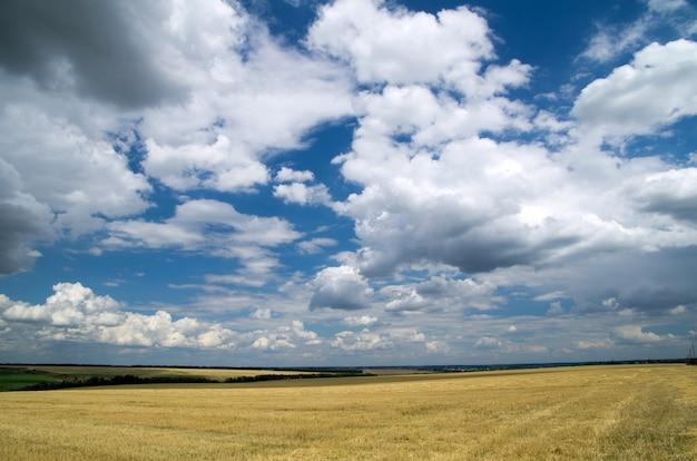Поле и красивое голубое небо с облаками