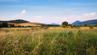 Field at foothills. Navarre
