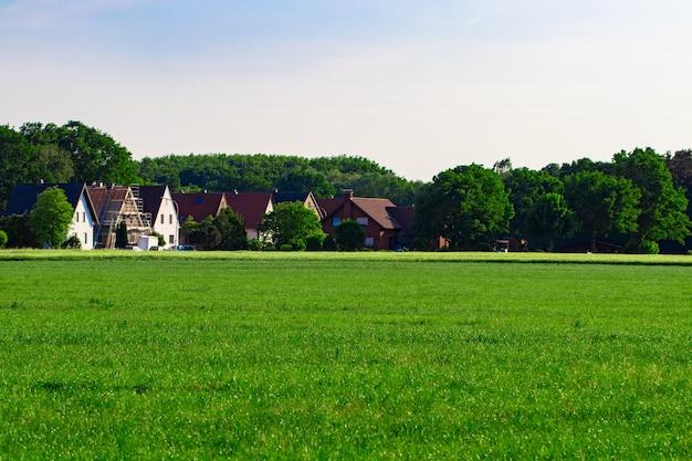 Поле на окраине села, трава, летний день.
