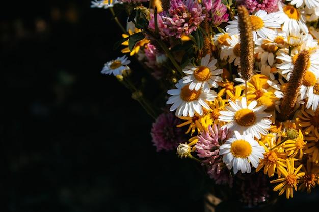ヒナギク、クローバー、小さな黄色い花、黒い背景にさまざまな草のフィールドブーケ