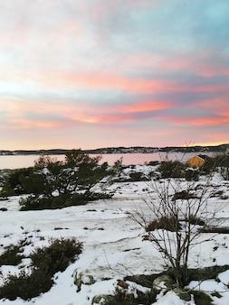 夕焼けの曇り空の下、水に囲まれた緑と雪に覆われた畑