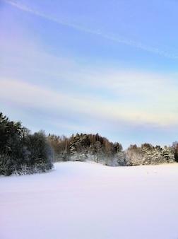 ノルウェーのラルヴィークで日光の下で緑に囲まれた雪に覆われたフィールド