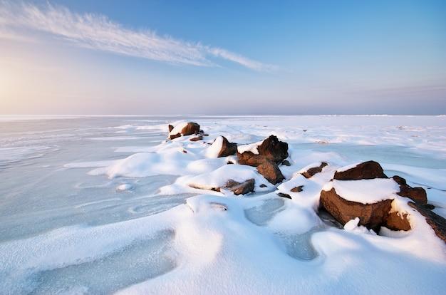 雪と氷の風景で覆われたフィールド