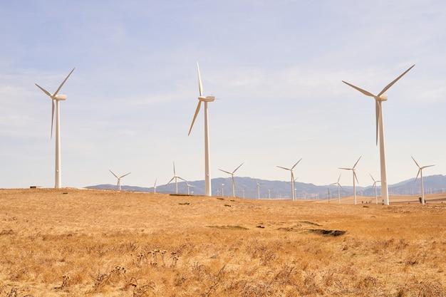 전기를 생산하는 풍력 터빈으로 가득한 필드. 재생 가능 에너지의 개념. 카디스, 스페인.