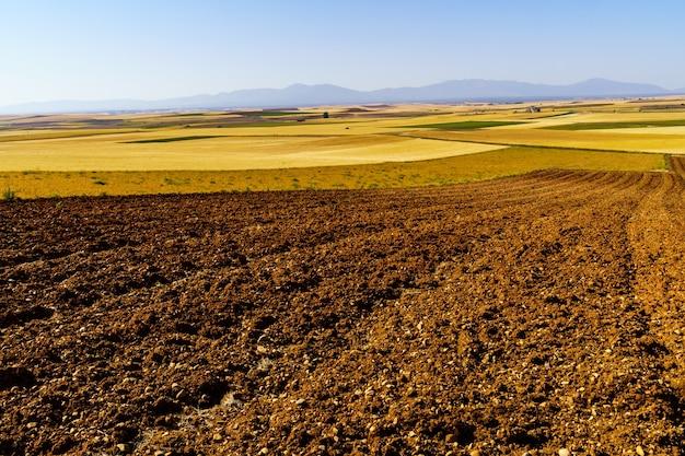 씨를 뿌리지 않은 땅, 배경과 푸른 하늘에 산이있는 소박한 terroir의 필드