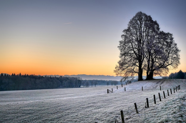 Field surrounded by hills and bare trees covered in the snow during the sunset in winter