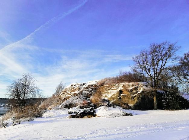 Campo circondato da alberi e rocce coperte di neve sotto un cielo blu a larvik in norvegia