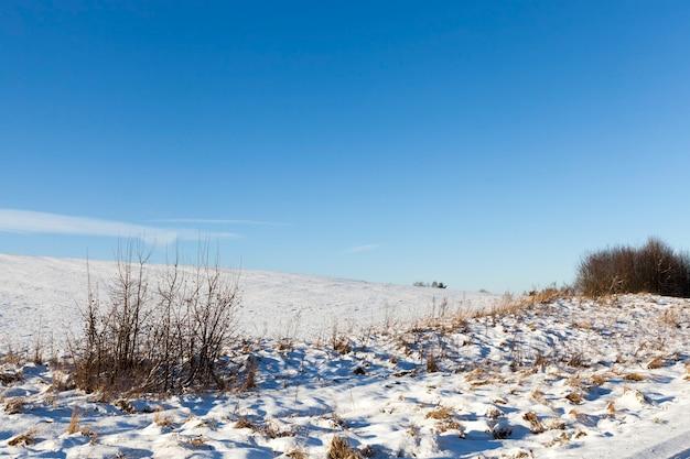 雪の中のフィールド