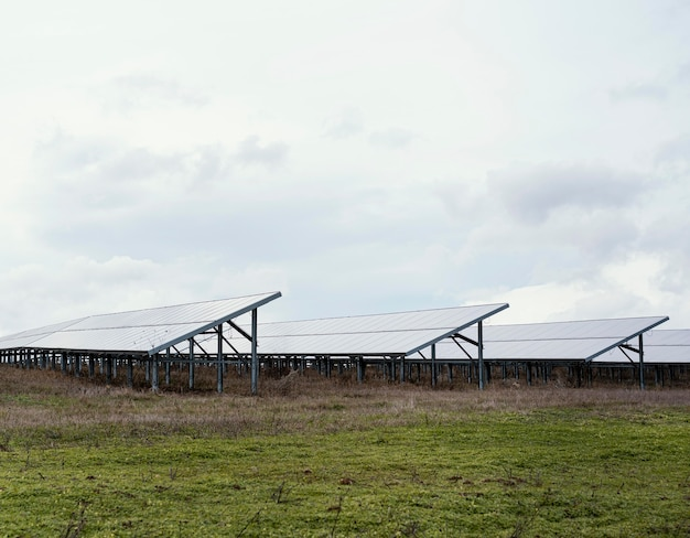 Campo con molti pannelli solari