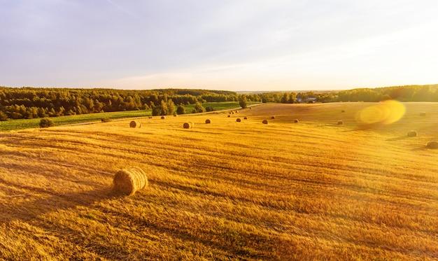 Поле с снопами пшеницы из воздуха