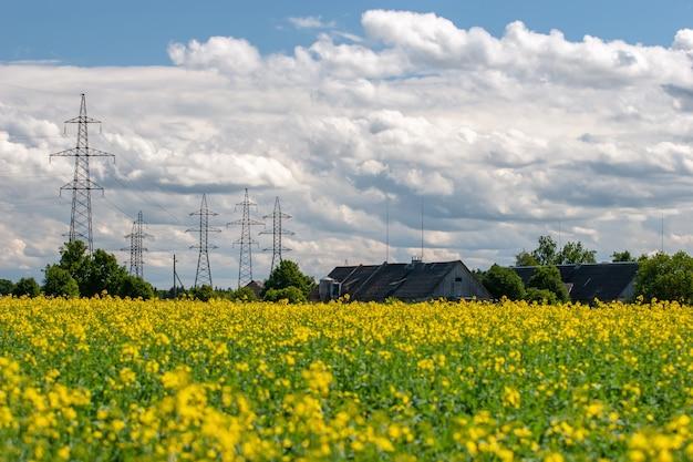 黄色い花、後ろに農場の屋根、雲のある大きな高電力線のある畑