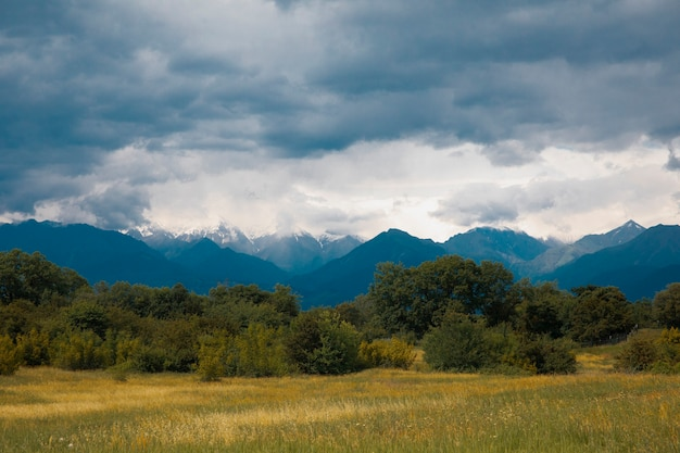 曇りの天気の下で山を越えてフィールド