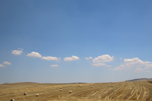 Fields under a blue cloudy sky