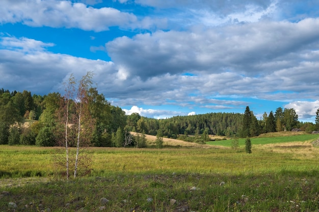 Fields and hills with forest in korelia in early autumn, north of russia