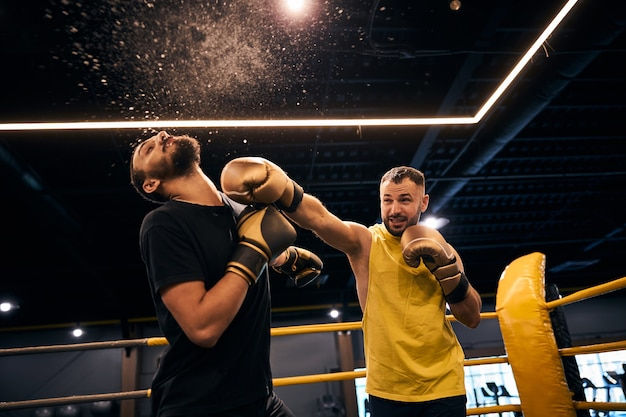 Fighter in yellow shirt knocking his opponent unconscious with a punch to the jaw