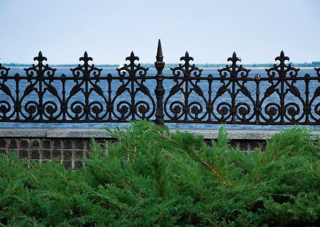 川の近くにある鍛造フェンスを考え出した金属製のフェンスの前にあるフェンスで囲まれた桟橋サイプレスの枝
