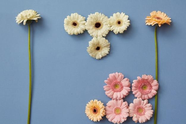 Фигурки из игры тетрис, сделанные из разных гербер на синем бумажном фоне. весенняя цветочная композиция. плоская планировка.