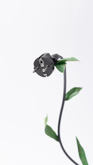 エコロジー、省エネ、エコフレンドリーのトピックに関する概念的な写真。コピースペース、垂直と白い背景の上の電気filka