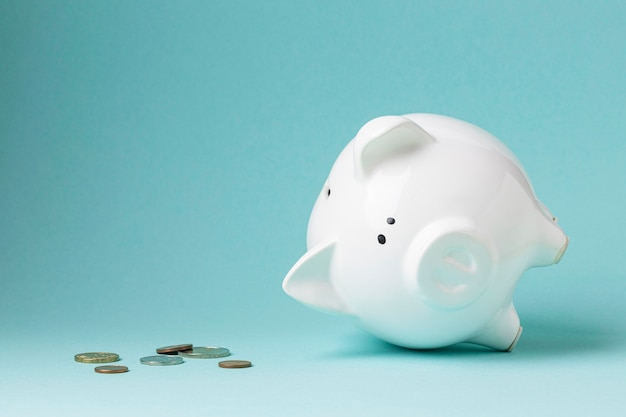 Finance elements with white piggy bank