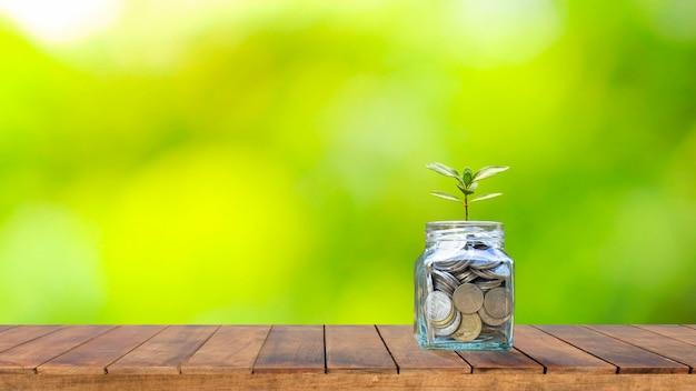 財政および退職計画のアイデア、木製のテーブルとぼやけた自然の緑の背景にお金を節約するためのボトルの植物の木。