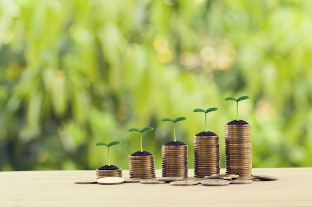 Financial concept: green sprout on rows of increasing coins on wood table. stock investment for dividend and capital gain in a long-term growth