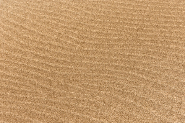 Fine beach sand with waves