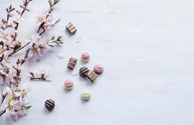 Прекрасные шоколадные пралине и бранчи с цветами миндаля