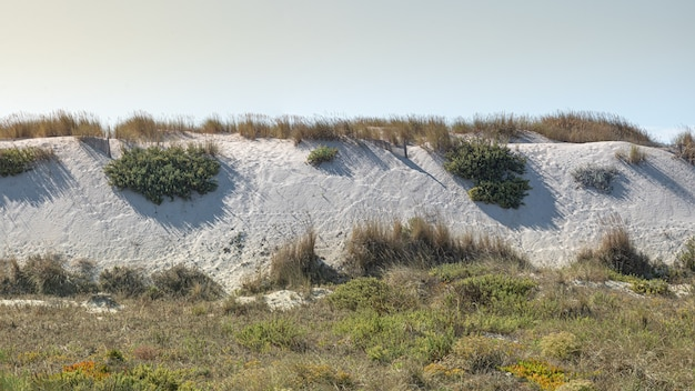 Fine white sand dunes on the coast