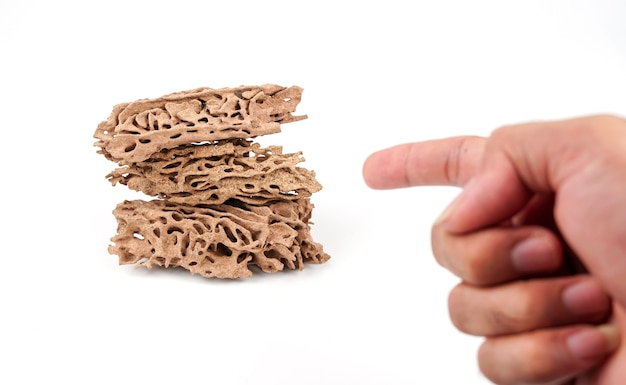 Finger pointing termite nests on white background