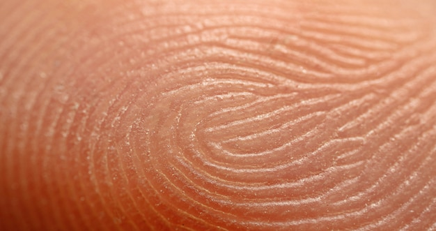 Finger print, super macro