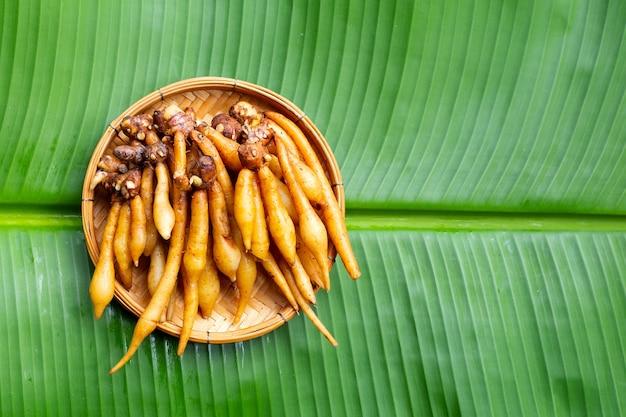 Finger root in bamboo basket on banana leaf