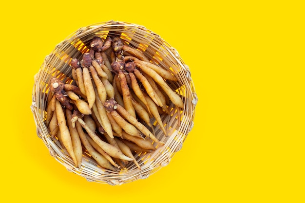 Finger root in bamboo basket on yellow background.