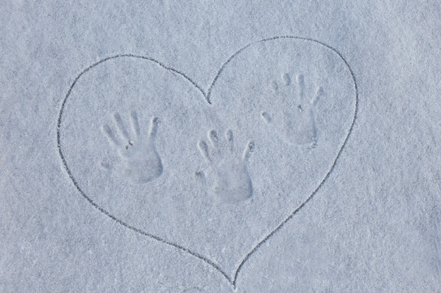 Fingerprint on  snow