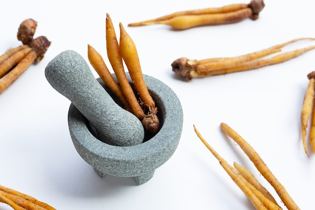 Fingerroot or boesenbergia in rock mortar with pestle on white