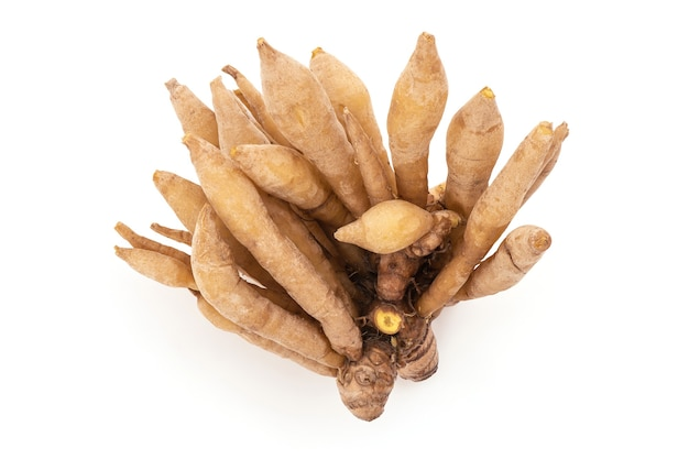 Fingerroot or boesenbergia rotunda rhizome isolated on white background with clipping path.top view,flat lay.