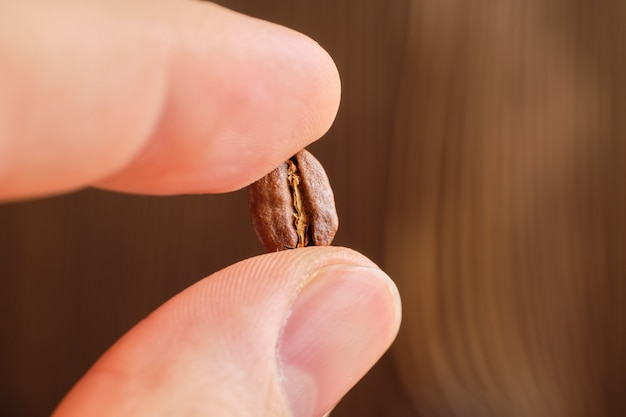 Fingers hold the roasted coffee seed on a wooden, blurred background.