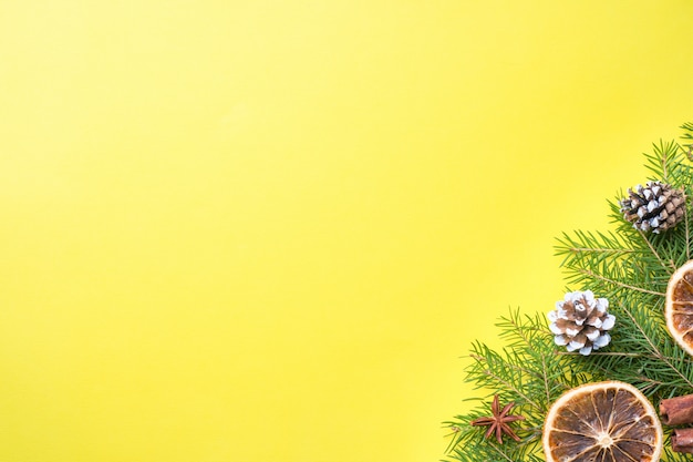 Fir branches and oranges cinnamon on yellow