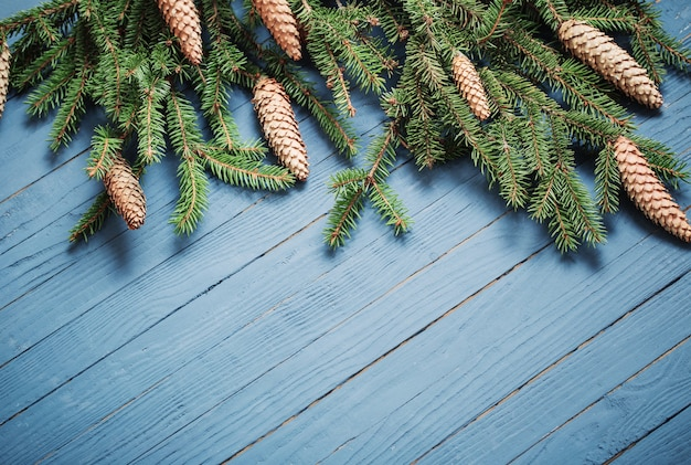 Fir branches with cones on blue wooden wall