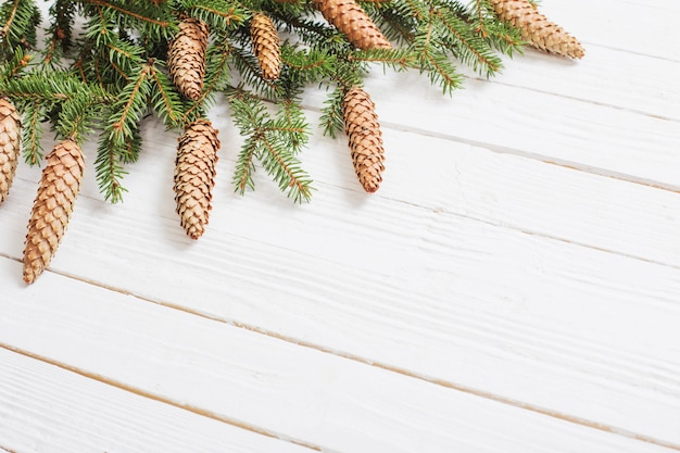 Fir branches with cones on white wooden wall